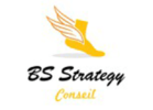 bs strategy